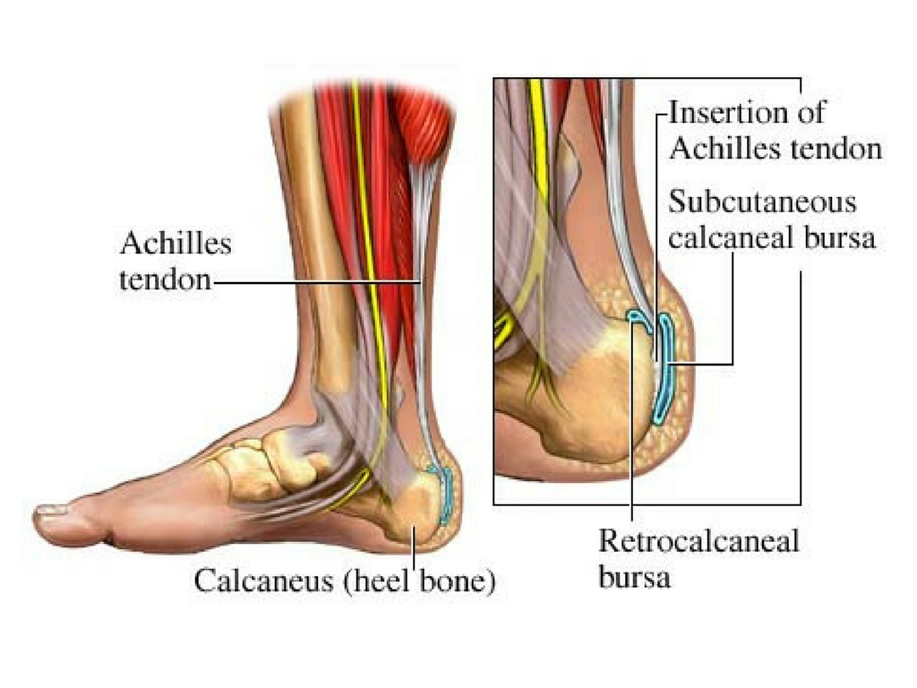 Back of the heel pain | Kimfoot.com